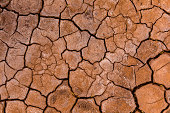 Parched & cracked earth, Atacama Desert