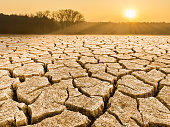 Close-up of drought in a sunlit waterless nature. View of split ground, forest, sky and glowing sun in a background. Sunshine. Idea of dryness, ecology, global warming, climate changes, extreme weathe