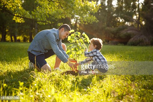Parents et enfants, plantation d'arbre : Photo
