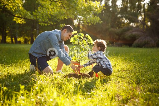 Parent and child planting tree : Stock Photo