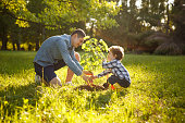 Father wearing gray shirt and shorts and son in checkered shirt and pants planting tree under sun.