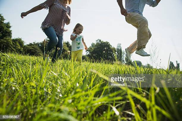 Parents and little daughter having fun on a meadow
