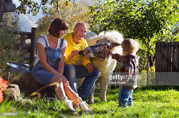 'Parents with child sitting in garden, playing with pony'