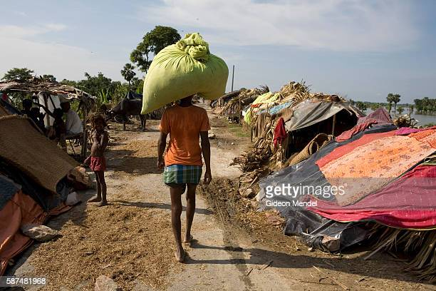 Parikshan Sahni carries fodder on his head as he walks past displaced people attempting to continue their lives as they live in makeshift plastic...