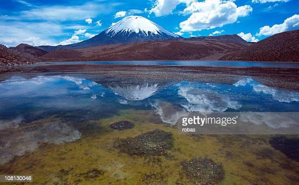 Parinacota Vulkan, verspiegelten in lake