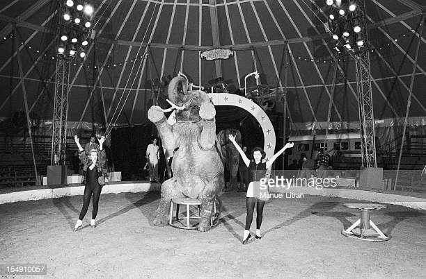 Paris April 14 under the big top of Cirque Gruss the actress Bernadette Lafont repeated a number with the elephants for the Gala of the Union of...