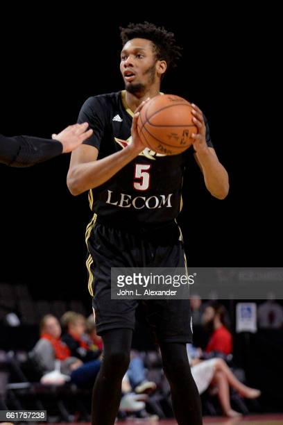 Paris Bass of the Erie BayHawks looks to pass the ball against the Windy City Bulls on March 28 2017 at the Sears Centre Arena in Hoffman Estates...