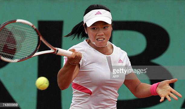 China Taipei player YungJan Chan hits a forehand shot to Russian player Elena Likhovtseva during their French Tennis Open first round match at Roland...