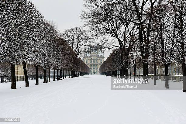 Paris in White - Tuileries Garden