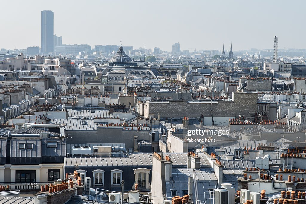 Parisian roofs : Stock Photo