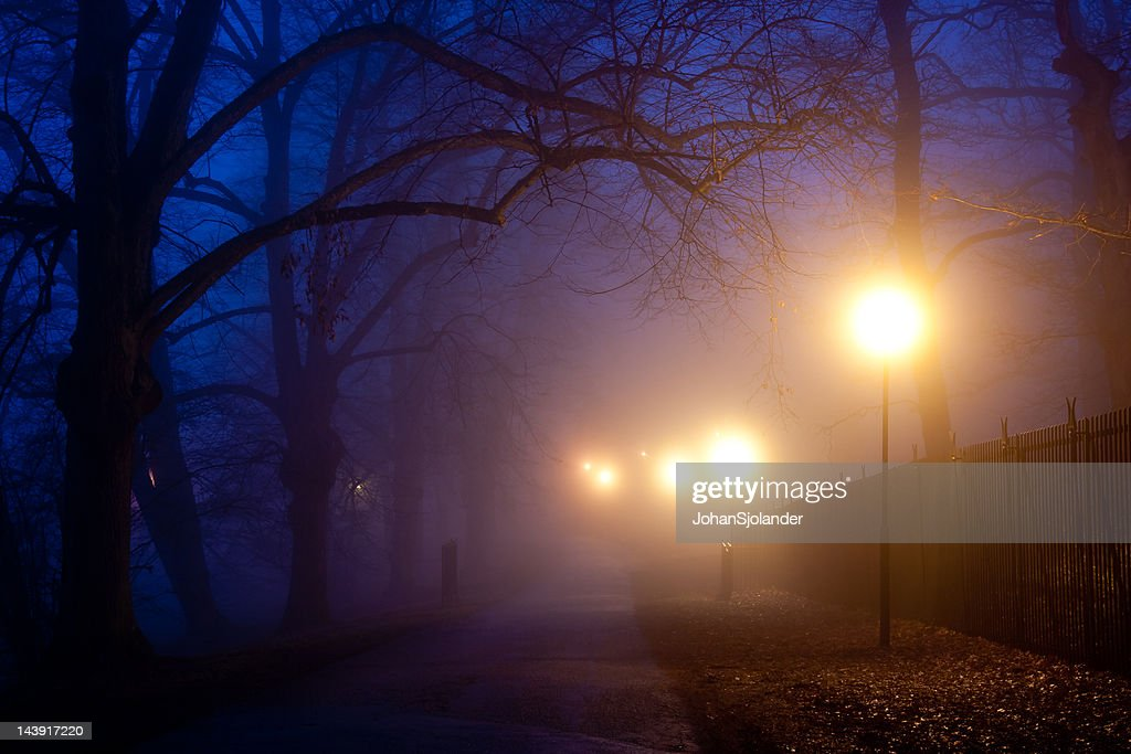 Park After Dark : Stock Photo