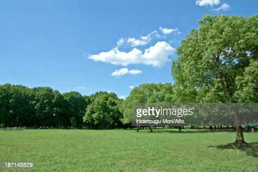 Park and sky with clouds