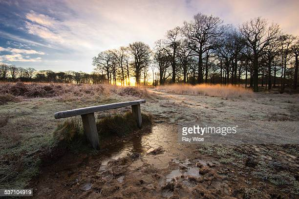 Park Bench and Sunrise