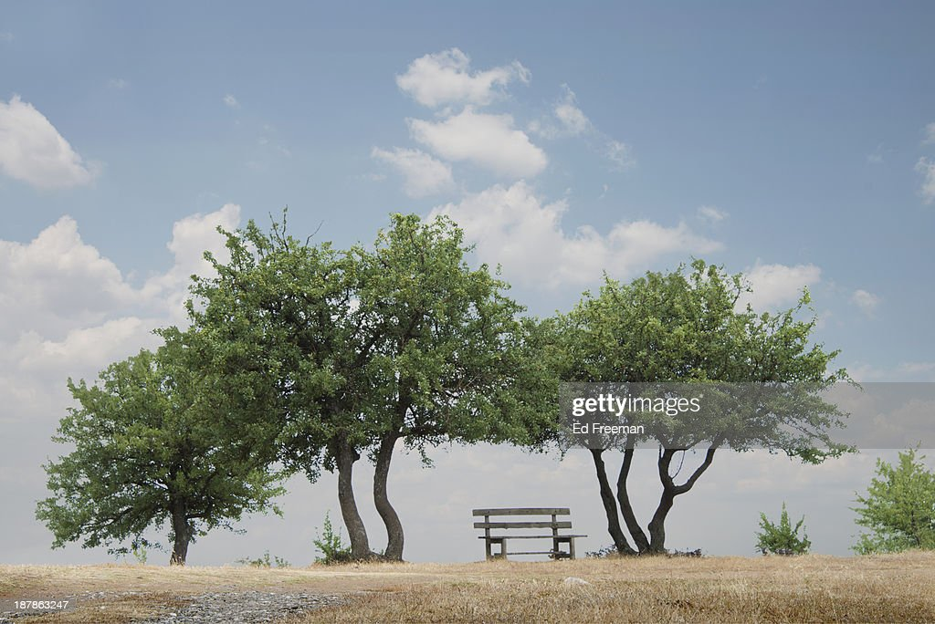 Park Bench and Trees, Meteora, Greece : Stock Photo