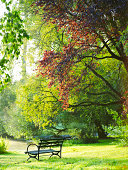 Park bench in park.