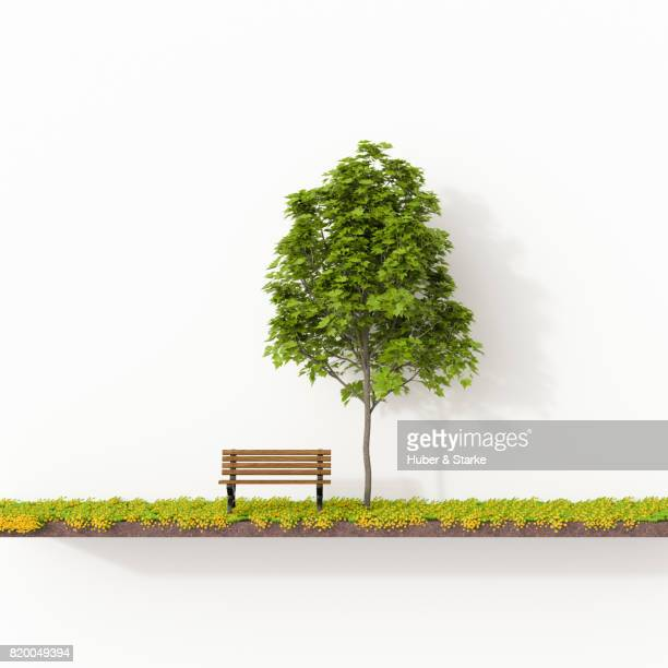 park bench on meadow