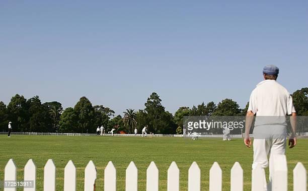 Park Cricket General View