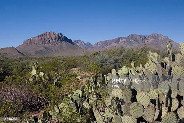 Park Desert