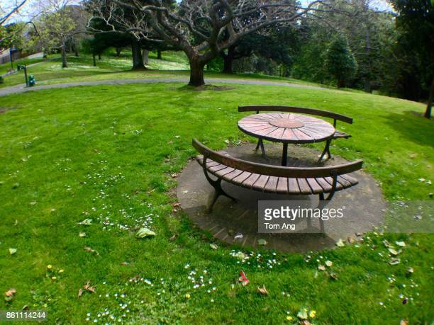 Park furniture on grassy area of park.