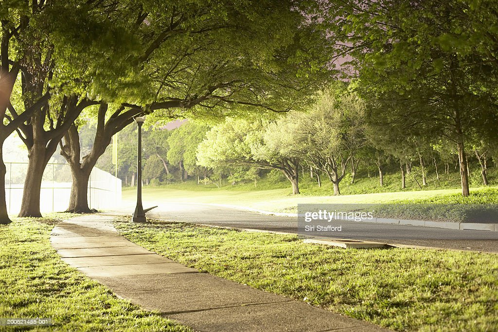 Park illuminated by artificial lighting : Stock Photo