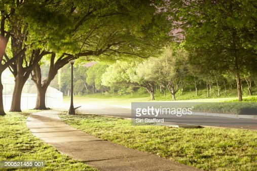 Park illuminated by artificial lighting : Foto de stock