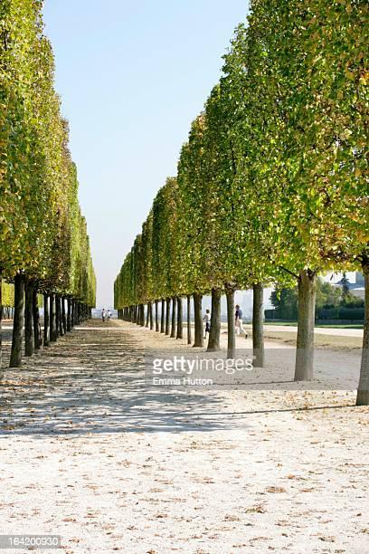 Park in St Germain En Laye