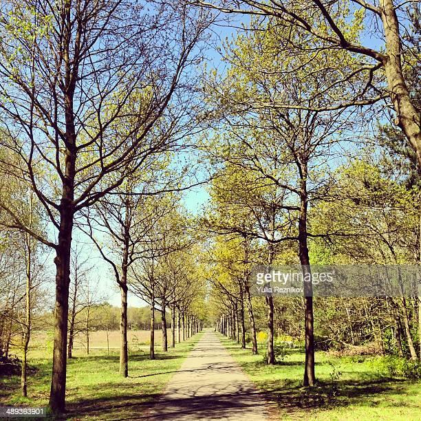 Park in Venlo
