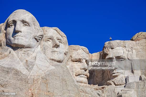 Park service employee standing on Lincolns head while preparing to rappel down the face of Mount Rushmore as part of a survey group Mount Rushmore...