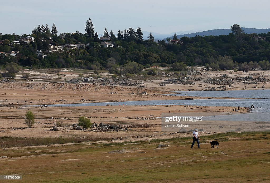 A park visitor walks his dog on a dry section of Folsom Lake on March 20, 2014 in Granite Bay, California. Now in its third straight year of drought conditions, California is experiencing its driest year on record, dating back 119 years, and reservoirs throughout the state have low water levels. Folsom Lake, a reservoir located northeast of Sacramento, has seen its capacity dwindle over the past 2-1/2 years of drought with current levels at around 20% of normal.