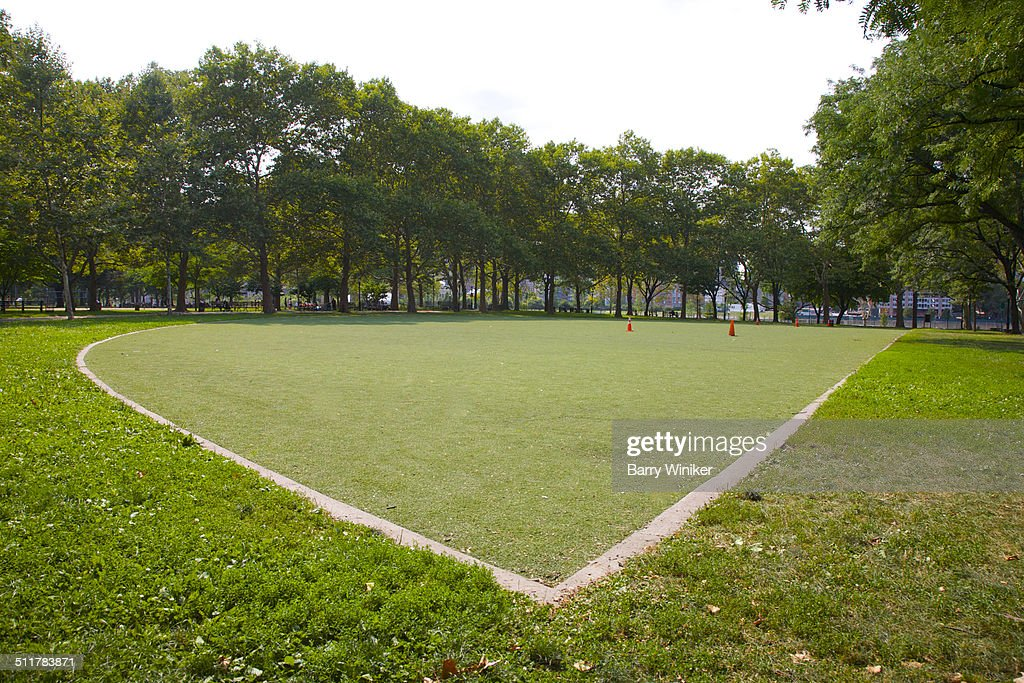 Park with synthetic and natural grass