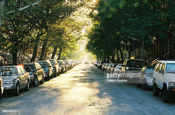 Parked cars  on street