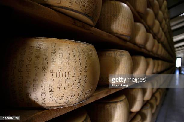 ParmigianoReggiano cheeses sit on storage racks during the aging process at Coduro cheesemakers in Fidenza Italy on Thursday Sept 11 2014 Russian...