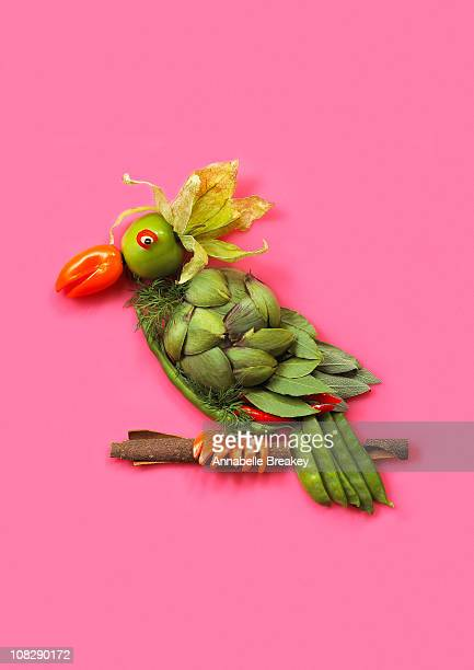 Parrot made from fresh  fruit and vegetables
