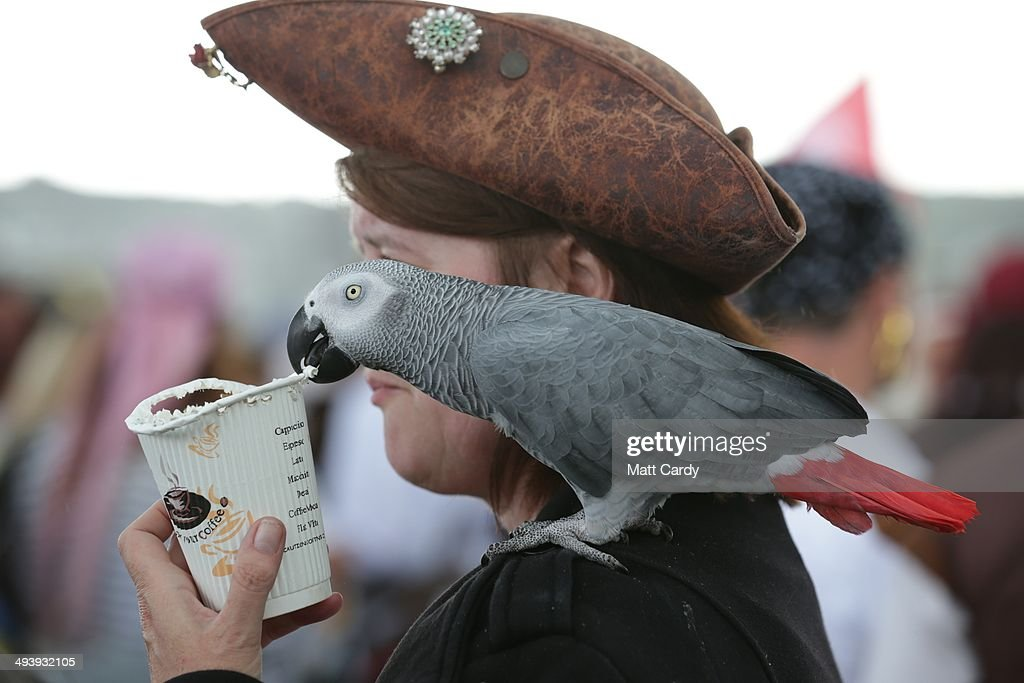 A parrot sits on the shoulder of a participant dressed as a pirate, as people gather to attempt to reclaim the Guiness World Record for the most pirates in one place, on the promenade in Penzance, on May 26, 2014 in Cornwall, England. Organisers of Pirates on the Prom Day 2014 were optimistic that more than 20,000 pirates would meet on the Penzance seafront to reclaim the world record they set three years ago, however the total was 14,155 pirates, 77 shy of the current world record now held by Hastings.