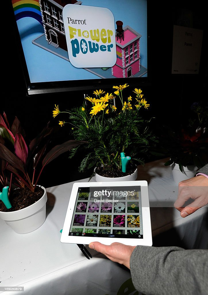Parrot's Flower Power plant monitor and application is on display during a press event at the Mandalay Bay Convention Center for the 2013 International CES on January 6, 2013 in Las Vegas, Nevada. The monitor will sense the plant's enviroment and relay the information to the user's smart phone or tablet. CES, the world's largest annual consumer technology trade show, runs from January 8-11 and is expected to feature 3,100 exhibitors showing off their latest products and services to about 150,000 attendees.