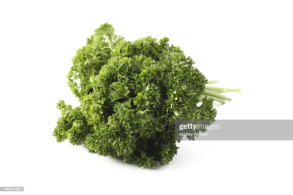 Parsley on white : Stock Photo