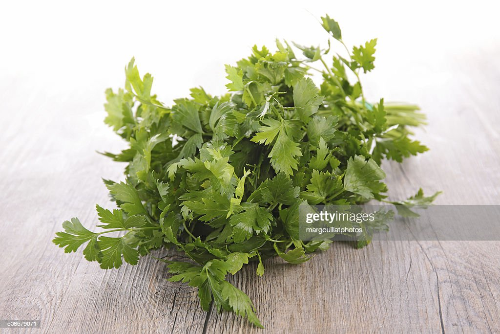 parsley : Bildbanksbilder