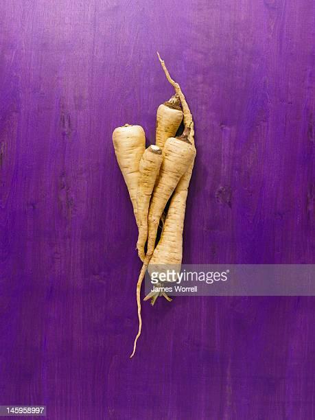 Parsnip Root Vegetable