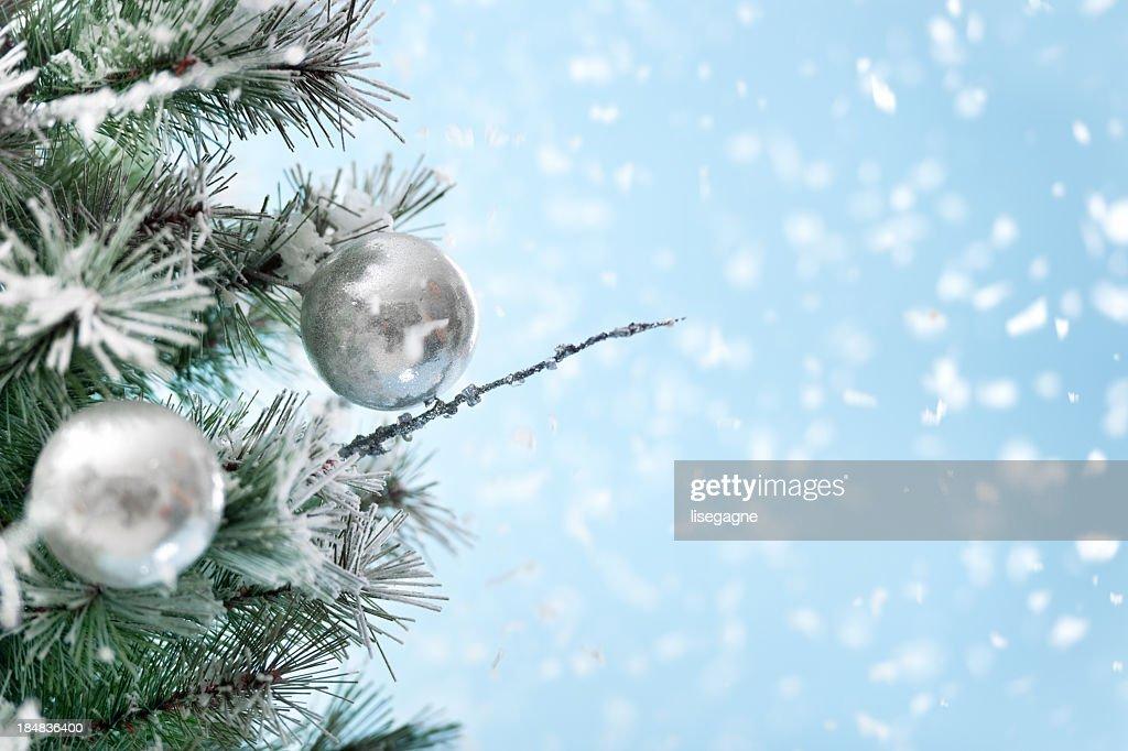 Part of Christmas tree : Stock Photo
