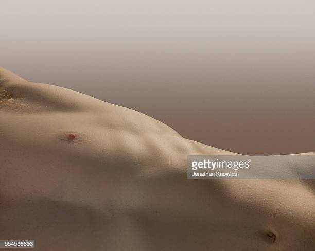 Part of male torso and belly