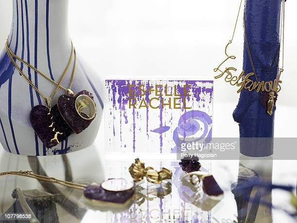 Part of Rachel Roy and Estelle jewelry design are photographed for In Style on February 1 2010 in New York City