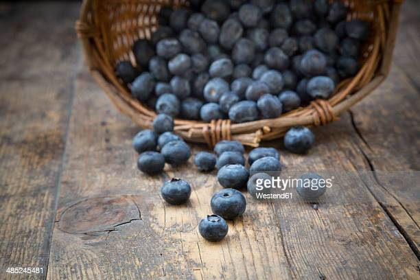 Part of wickerbasket with blueberries (Vaccinium myrtillus) on wooden table