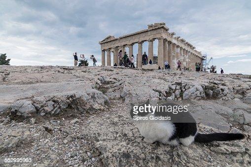 Parthenon : Stock Photo