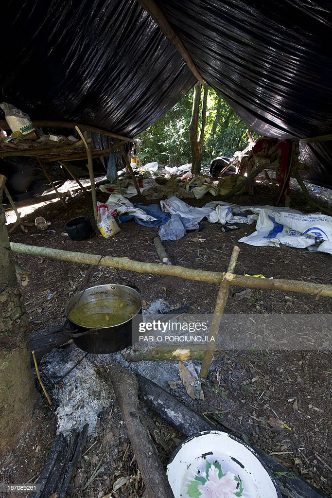 Partial view of a marijuana grower's improvised camp located by members of the Paraguayan SENAD (Antidrug National Agency) into thne woods in Pedro Juan Caballero (in the border with Brazil) 550 km northeast of Asuncion on April 19, 2013. AFP PHOTO/Pablo PORCIUNCULA