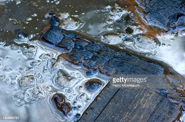 Partially burnt wood floating in filthy water