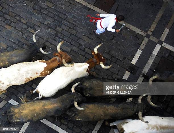 Participants run in front of Miura's bulls during the last 'encierro' of the San Fermin Festival in Pamplona northern Spain on July 14 2015 Each...