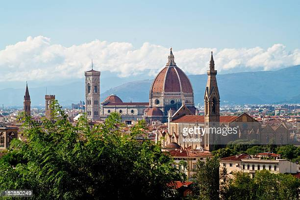 Particular view of Florence