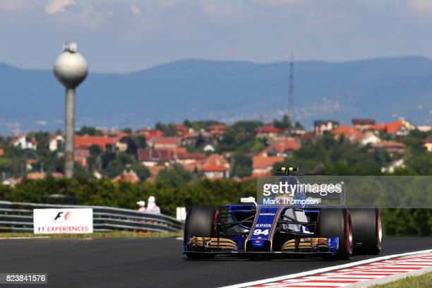 Pascal Wehrlein of Germany driving the Sauber F1 Team Sauber C36 Ferrari on track during practice for the Formula One Grand Prix of Hungary at...
