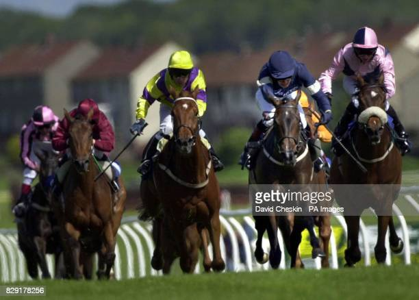 Pasithea wins the Dashing White Sergeant stakes at Ayr racecourse Scotland Altay was second and Sun bird was third