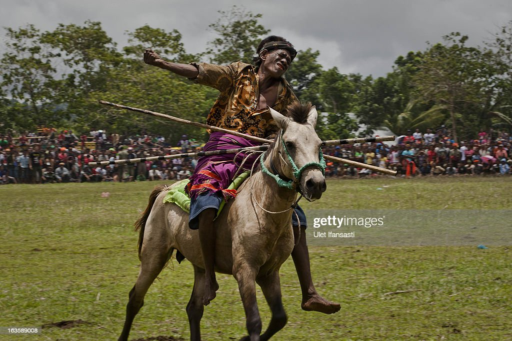 A Pasola rider reacts after throwing his spear during the pasola war festival at Wainyapu village on March 7, 2013 in Sumba Island, East Nusa Tenggara, Indonesia. Sandalwood pony horses are native to the island of Sumba in Indonesia. For the people of Sumba, the Sandelwood horse has an important role in all aspects of their daily life, including transportation and culture. On the island of Sumba the ancient tradition of Pasola still draws large crowds and tourists. Pasola involves two teams of men on horseback charging towards each other.